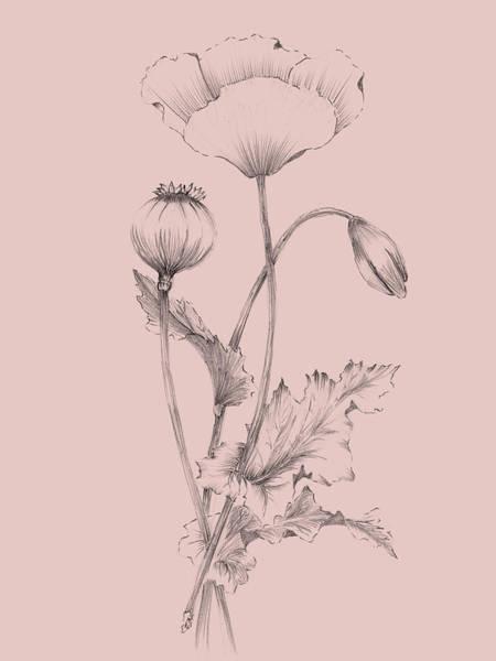 Wall Art - Mixed Media - Blush Pink Flower 3 by Naxart Studio