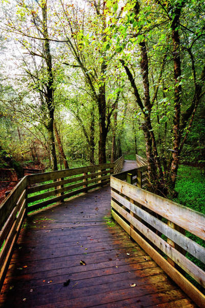Photograph - Boardwalk Along The River by Debra and Dave Vanderlaan