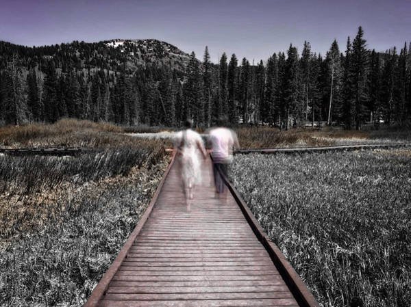 Photograph - Boardwalk by Kevin Bergen