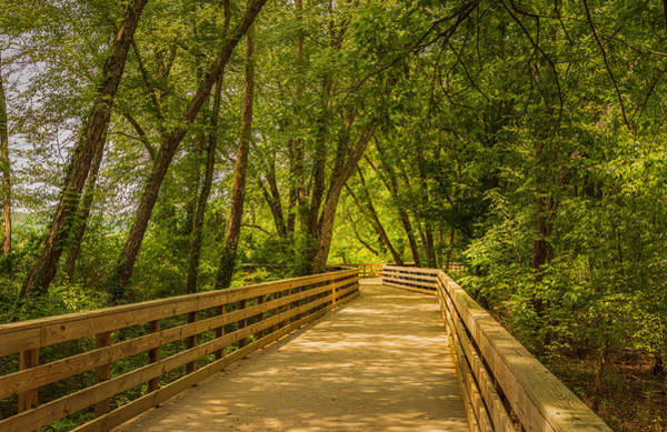 Photograph - Boardwalk Through The Woods by Keith Smith