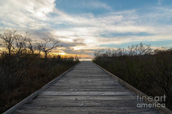 Wall Art - Photograph - Boardwalk To The Bayside  by Michael Ver Sprill