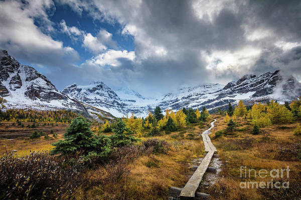 Wall Art - Photograph - Boardwalk To The Mountains by Inge Johnsson