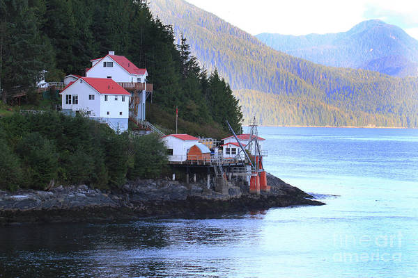 Photograph - Boat Bluff Lighthouse As Seen From The Inside Passage. 2014 by California Views Archives Mr Pat Hathaway Archives