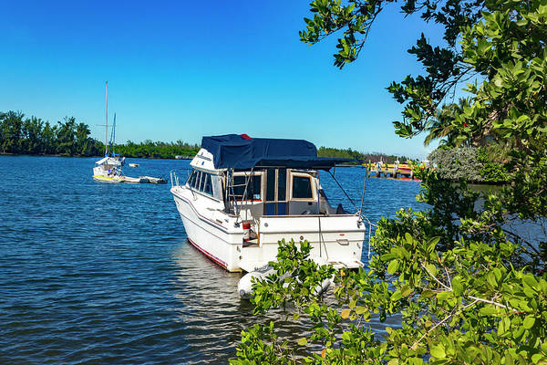 Photograph - Boat In Harbor Series 8203 by Carlos Diaz