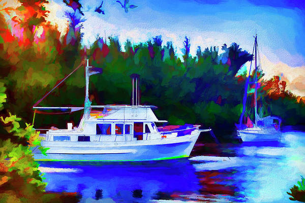 Photograph - Boat Painting Series 8892 by Carlos Diaz