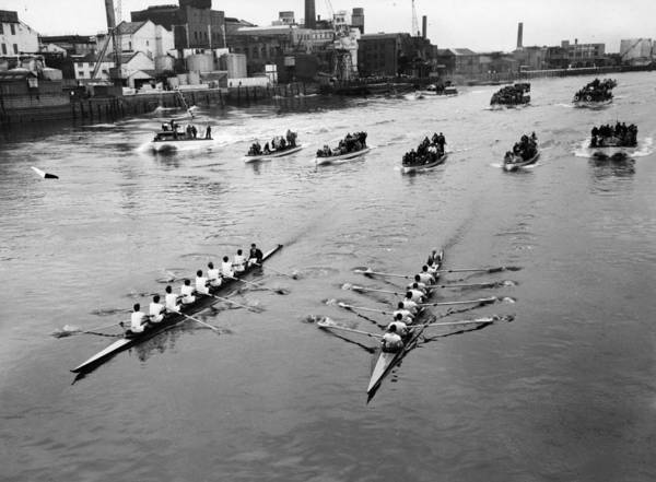 Kensington And Chelsea Photograph - Boat Race by Central Press