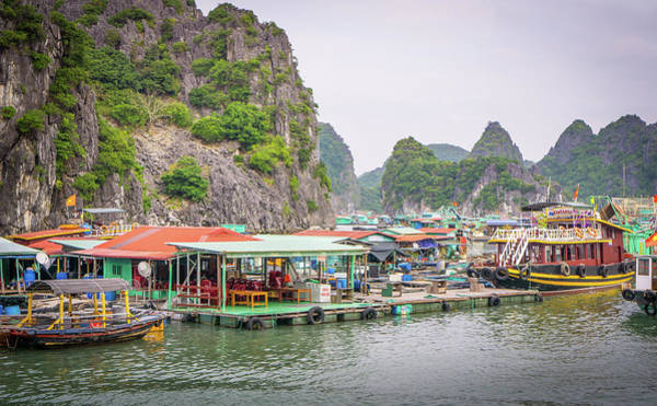 Photograph - Boat Village Cat Ba by Gary Gillette