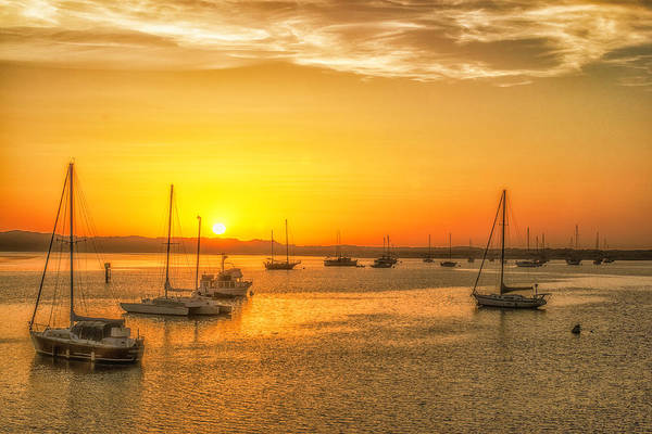 Boats At Sunset Art Print by Fernando Margolles