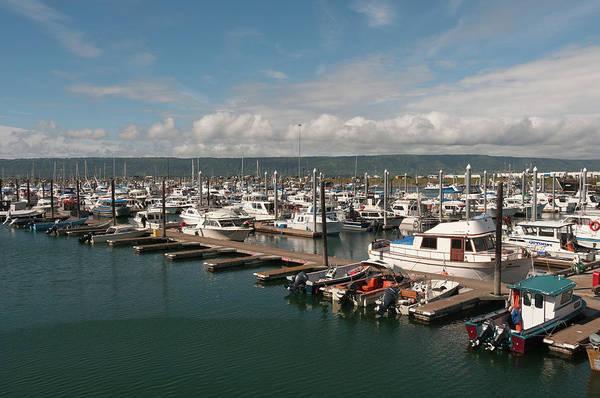Recreational Boat Photograph - Boats Docked At Small Boat Harbor by John Elk