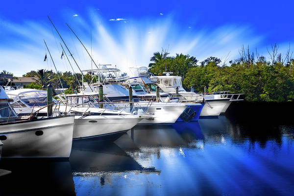 Photograph - Boats In Marina 8249 by Carlos Diaz