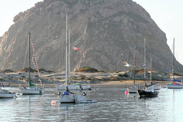 Photograph - Boats In Morro Bay by Michael Rock