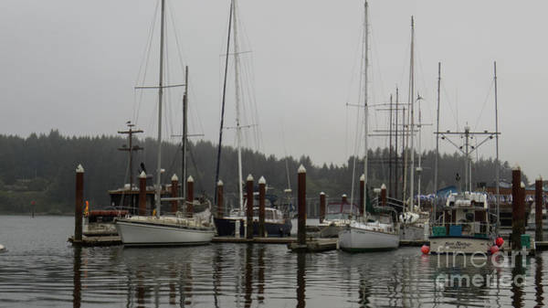 Photograph - Boats In The Harbor by Christy Garavetto