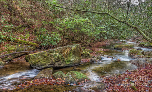 Photograph - Boggs Creek by Bernd Laeschke