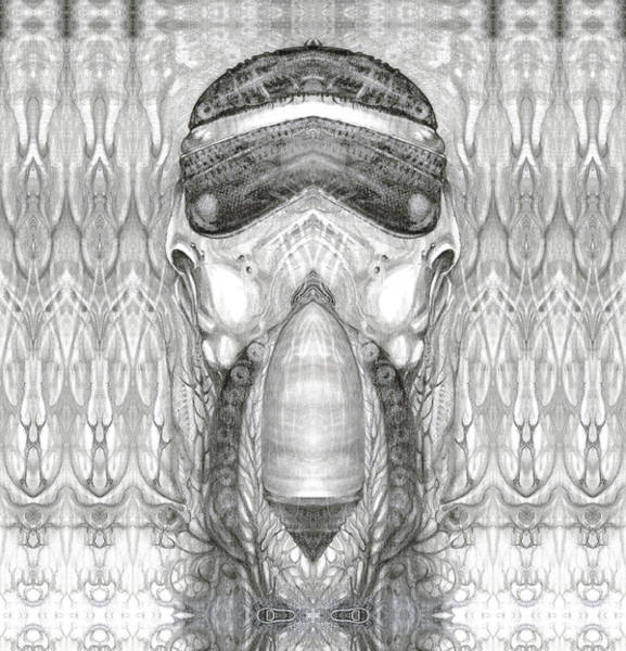 Digital Art - Bogomil Variation 1 by Otto Rapp
