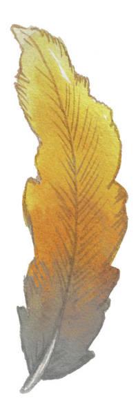 Wall Art - Painting - Bohem Feather II by Elizabeth Medley