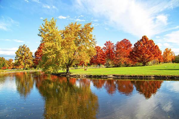 Photograph - Boise Fall Foliage by Dart and Suze Humeston