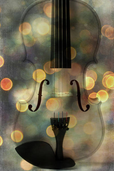 Wall Art - Photograph - Bokeh Violin by Garry Gay