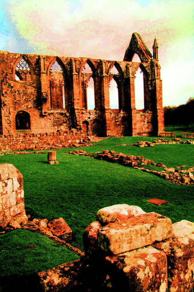 Wall Art - Photograph - Bolton Abbey by Jez C Self