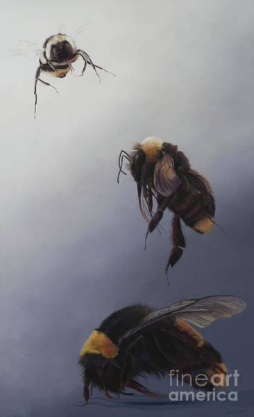 Wall Art - Painting - Bombus Flight Two by Odile Kidd