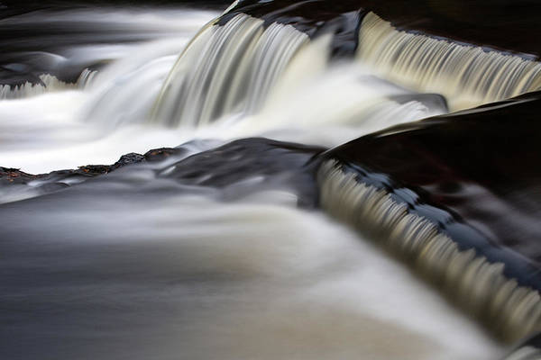 Wall Art - Photograph - Bond Falls 12 by Heather Kenward