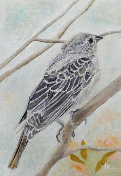 Painting - Bonny Cowbird by Angeles M Pomata
