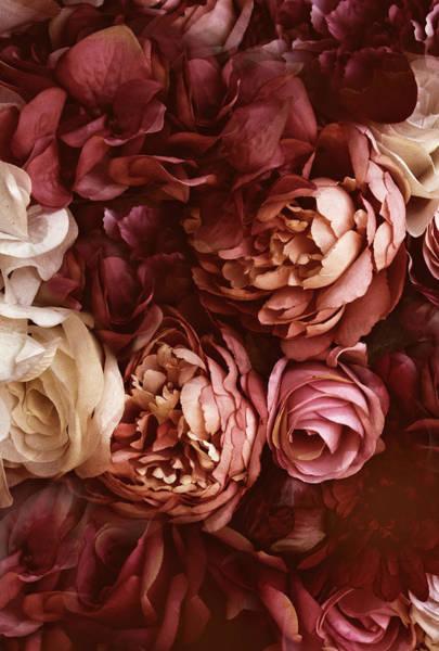 Photograph - Bordeaux Bouquet by Jessica Jenney