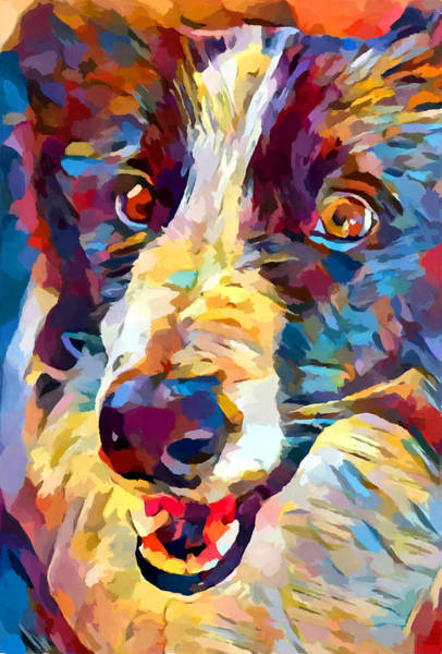 Wall Art - Painting - Border Collie 4 by Chris Butler