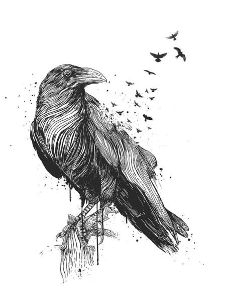 Wall Art - Drawing - Born To Be Free  by Balazs Solti