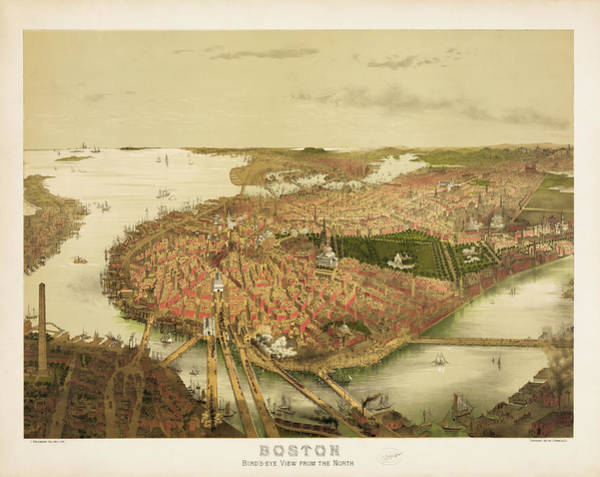 Wall Art - Photograph - Boston Birds Eye View From The North by Bill Cannon