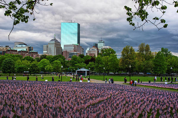 Photograph - Boston Common Memorial Day Flags Dramatic Sky Boston Ma Tree by Toby McGuire