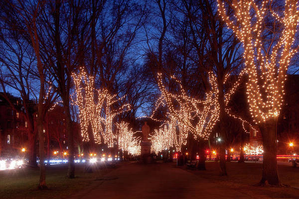 Photograph - Boston Commonwealth Avenue Mall Christmas by Joann Vitali