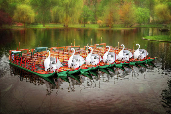 East County Photograph - Boston Public Garden Swan Boats  by Carol Japp