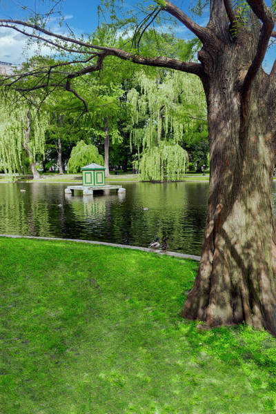 Photograph - Boston Series 5059 by Carlos Diaz