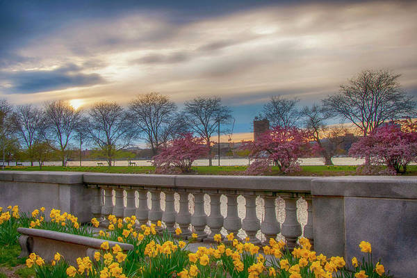 Photograph - Boston Spring On The Charles River by Joann Vitali