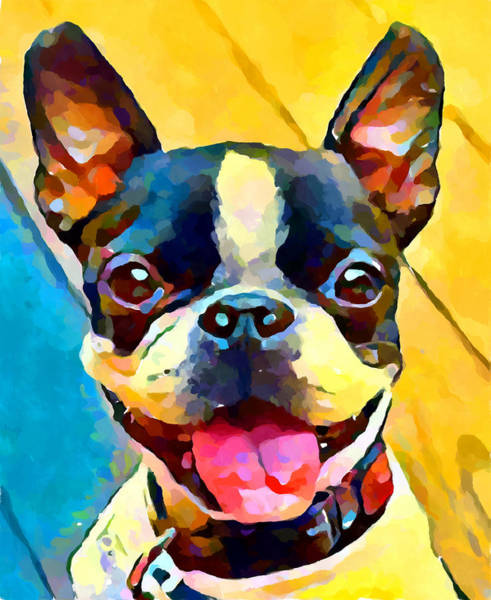 Wall Art - Painting - Boston Terrier 2 by Chris Butler