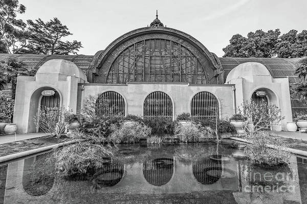 Photograph - Botanical Building Balboa Park San Diego Bw by Edward Fielding