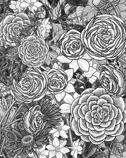 Painting - Botanical Watercolor Flowers Garden Flowerbed Black And White Iv by Irina Sztukowski