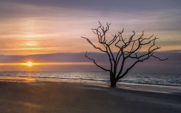 Photograph - Botany Bay Sunrise by James Woody