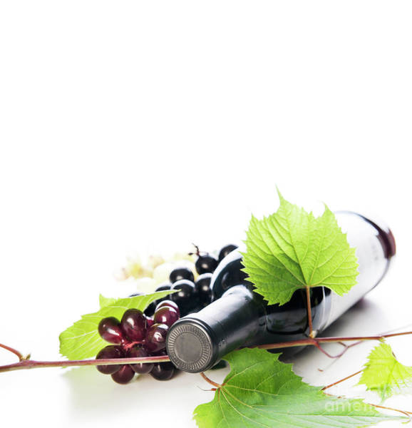 Italian Wine Photograph - Bottle Of Luxury Red Wine And Grape Vine Isolated Over White Bac by Jelena Jovanovic
