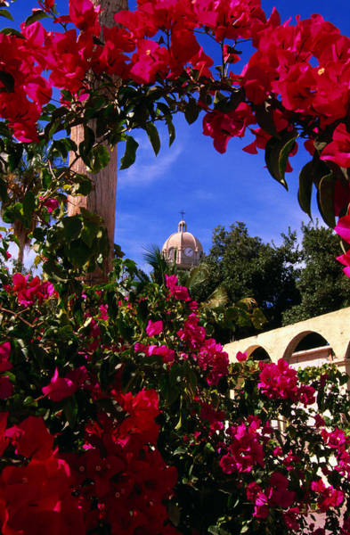 Bougainvillea Photograph - Bougainvillea Arch Framing Belltower by Ralph Lee Hopkins