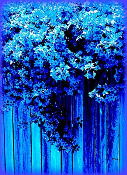 Photograph - Bougainvillea Blues by VIVA Anderson