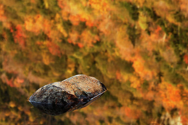 Beaver Pond Wall Art - Photograph - Boulder And Fall Colors Reflected by Adam Jones