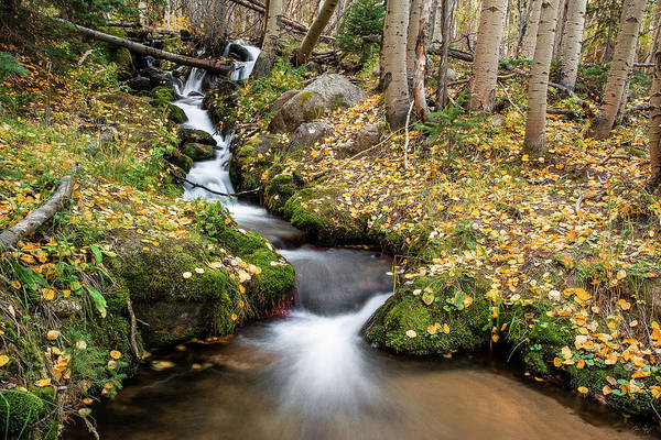 Photograph - Boulder Brook by Aaron Spong