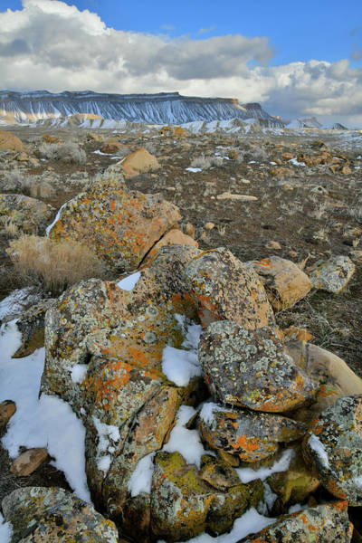 Photograph - Boulder Field Of The Book Cliffs by Ray Mathis