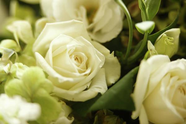 Wedding Bouquet Photograph - Bouquet Detail by Davidf