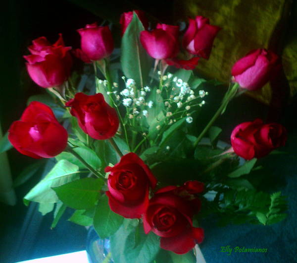 Photograph - Bouquet Of Red Roses by Elly Potamianos