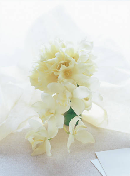 Cymbidium Photograph - Bouquet On A Table by Michael H