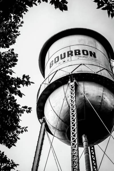Photograph - Bourbon Water Tower Framed By Foliage - Monochrome Edition by Gregory Ballos