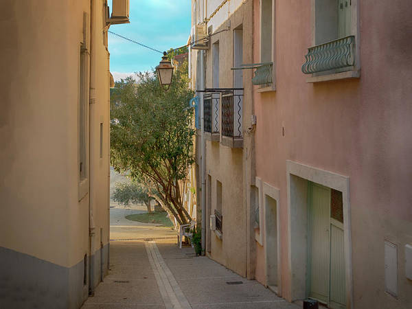 Photograph - Bouzigue Walk At Twilight by Jessica Levant
