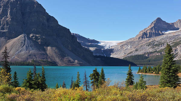 Bow River Wall Art - Photograph - Bow Lake And Bow Glacier by Frank J Wicker
